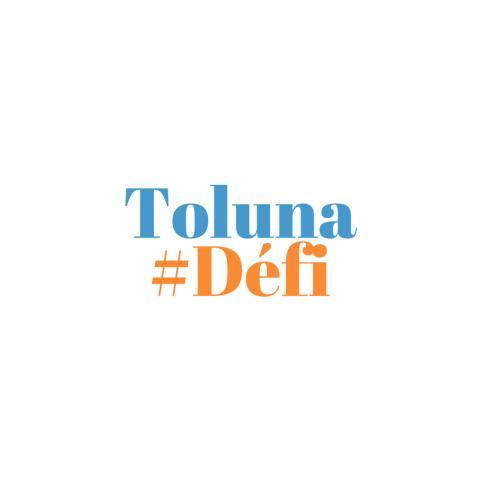toluna-challenge-fr