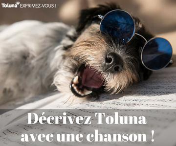 Décrivez Toluna avec une chanson !