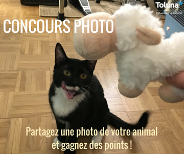 concours photo