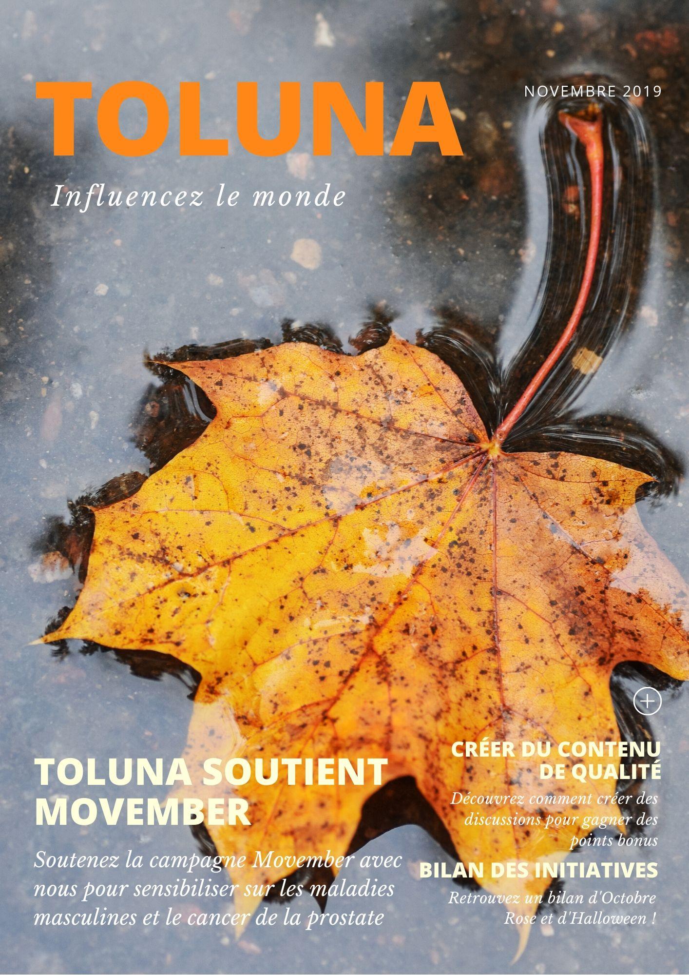 FR Toluna News - Nov 2